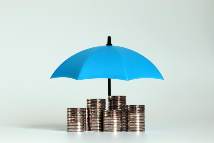 Paycheck Protection Program