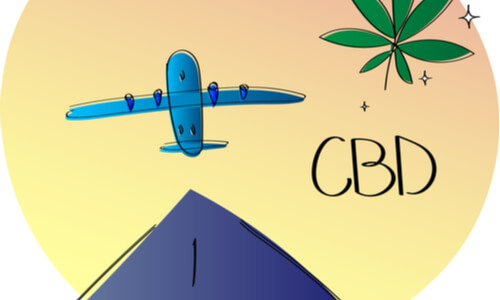 cbd oil infogrpahic with plane and hemp plant on it